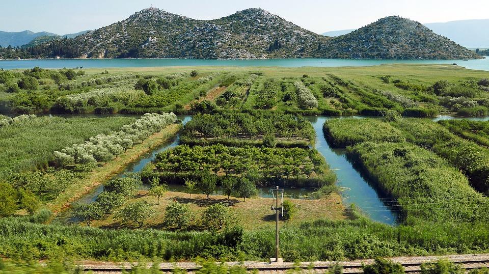 Neretva Estuary, Irrigation, Management