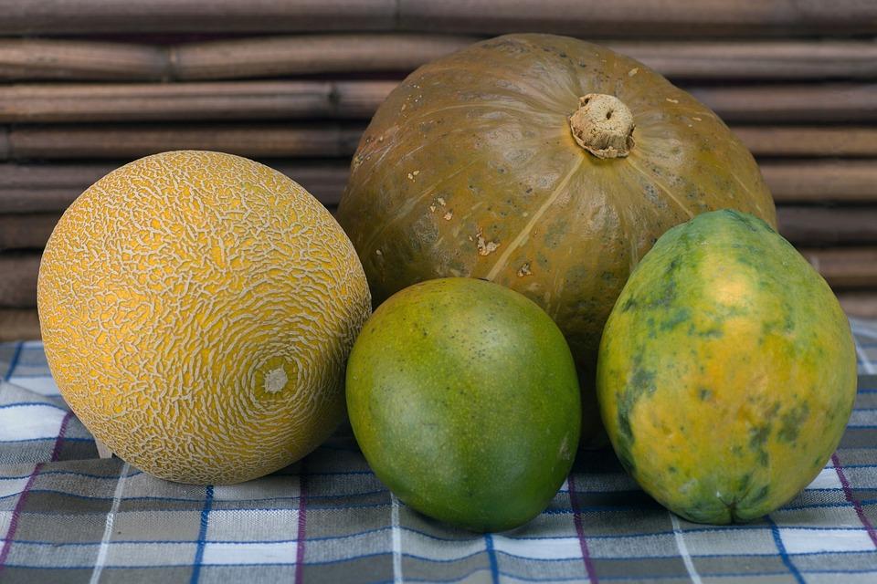 Still Life, Pumpkin, Melon, Mango