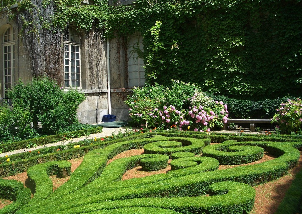 Paris, France, Garden, Plants, Designed, Manicured