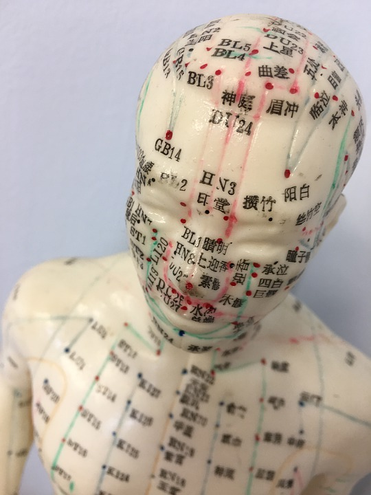 Acupuncture, Acupuncture Model, Mannequin, Medical