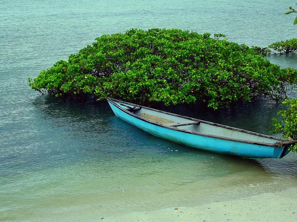Boat, Beach, Boats, Mar, Water, Fishing Boat, Canoe