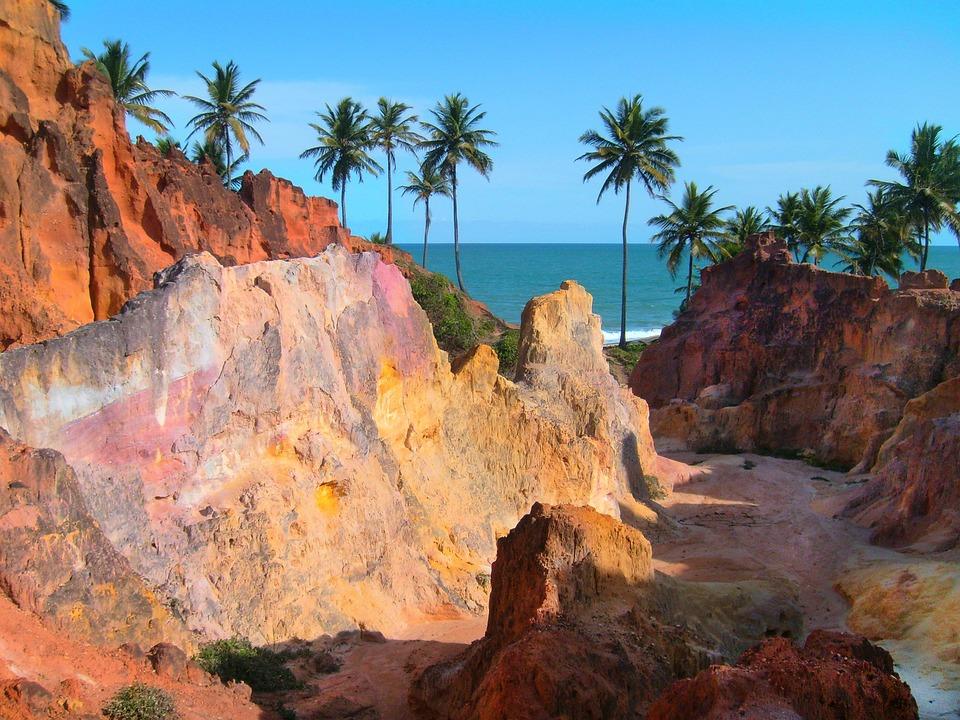 Coconut Trees, Cliffs, Mar