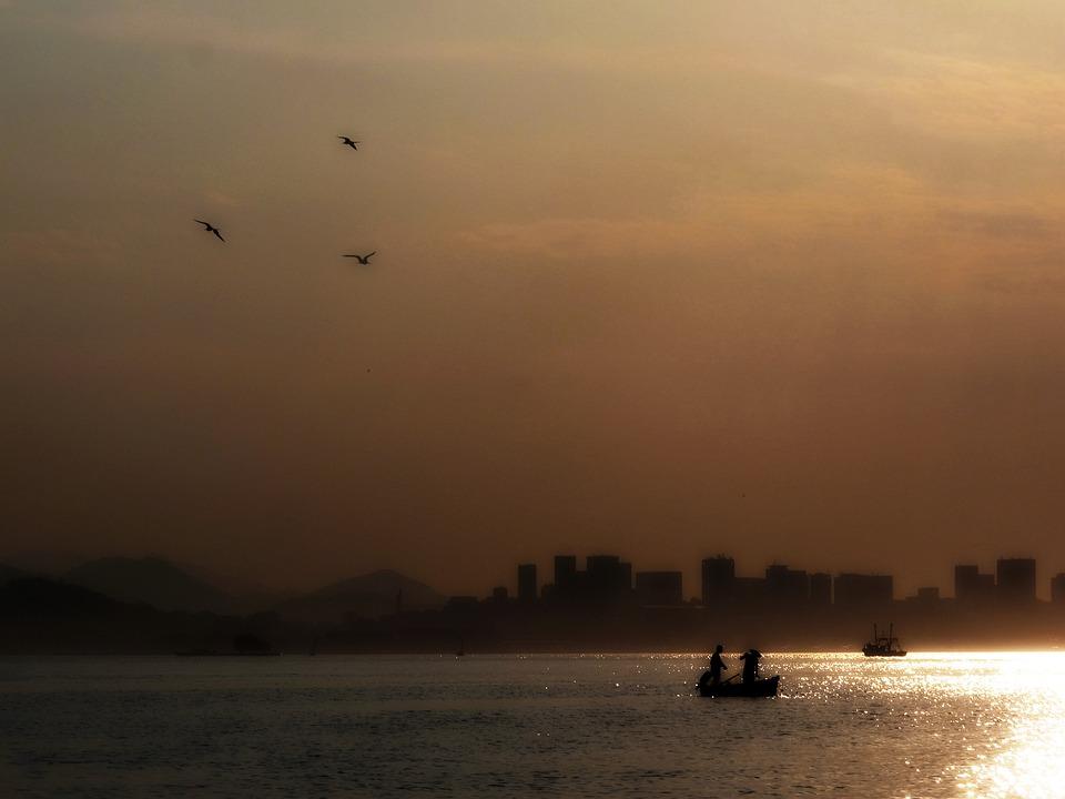 Mar, Seagull, Fisherman, Fishing, Rio De Janeiro