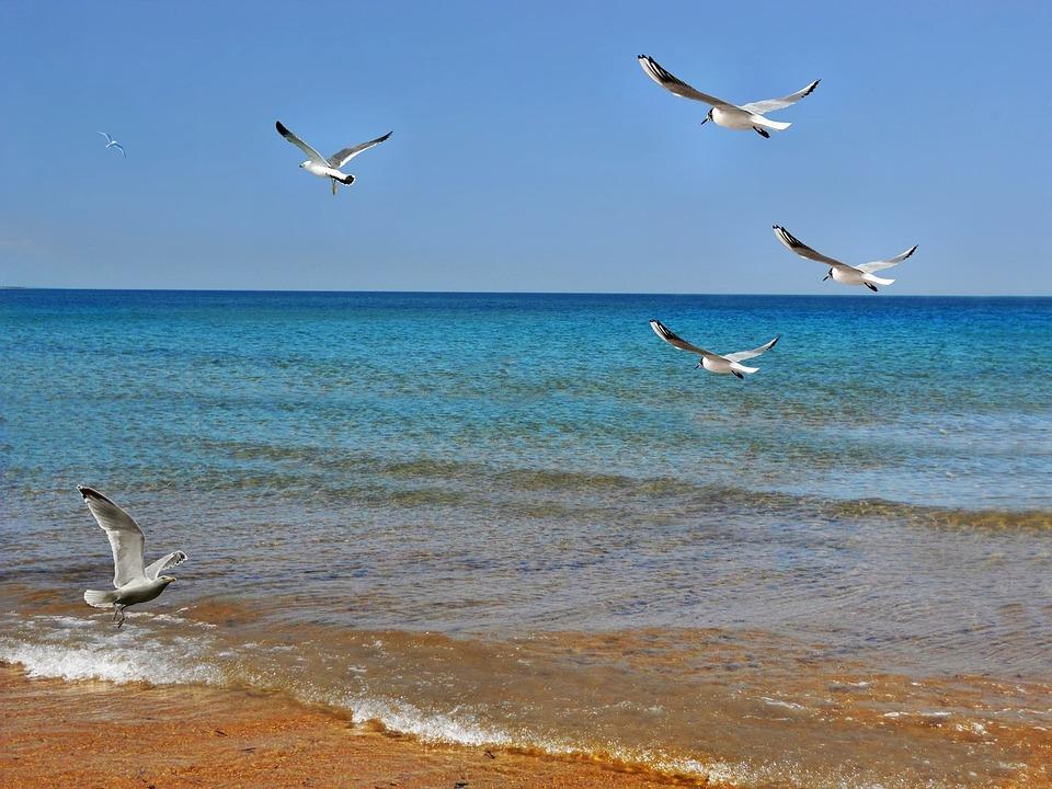 Beach, Sand, Texture, Mar, Sand Beach, Beira Mar, Water