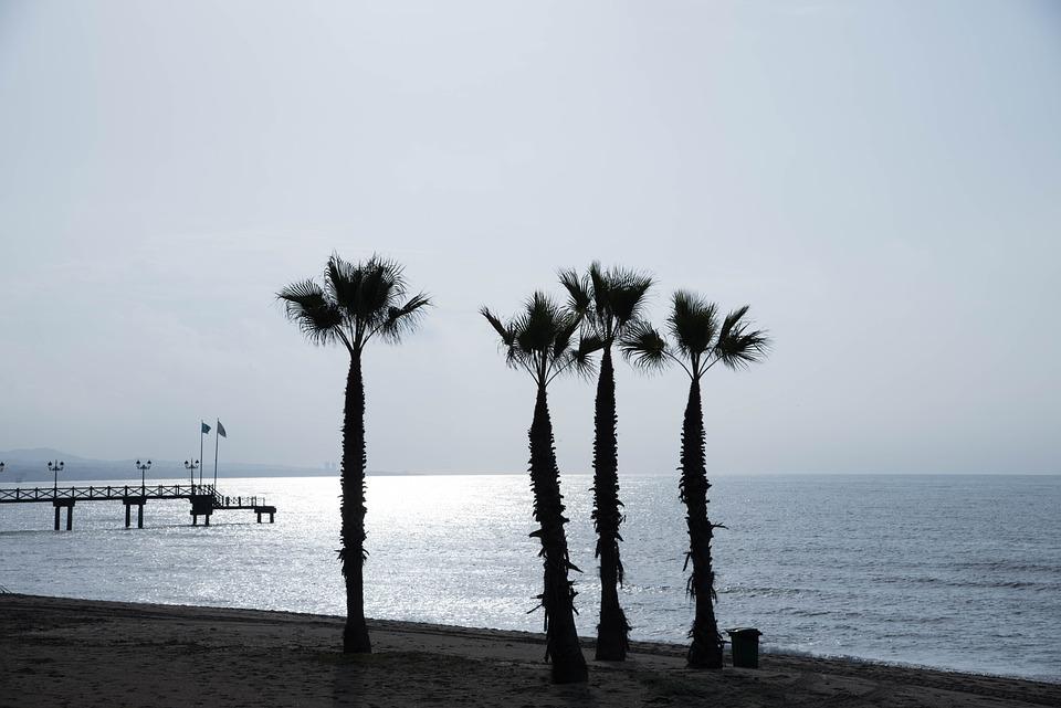 Marbella, Jetty, Palms, Beach