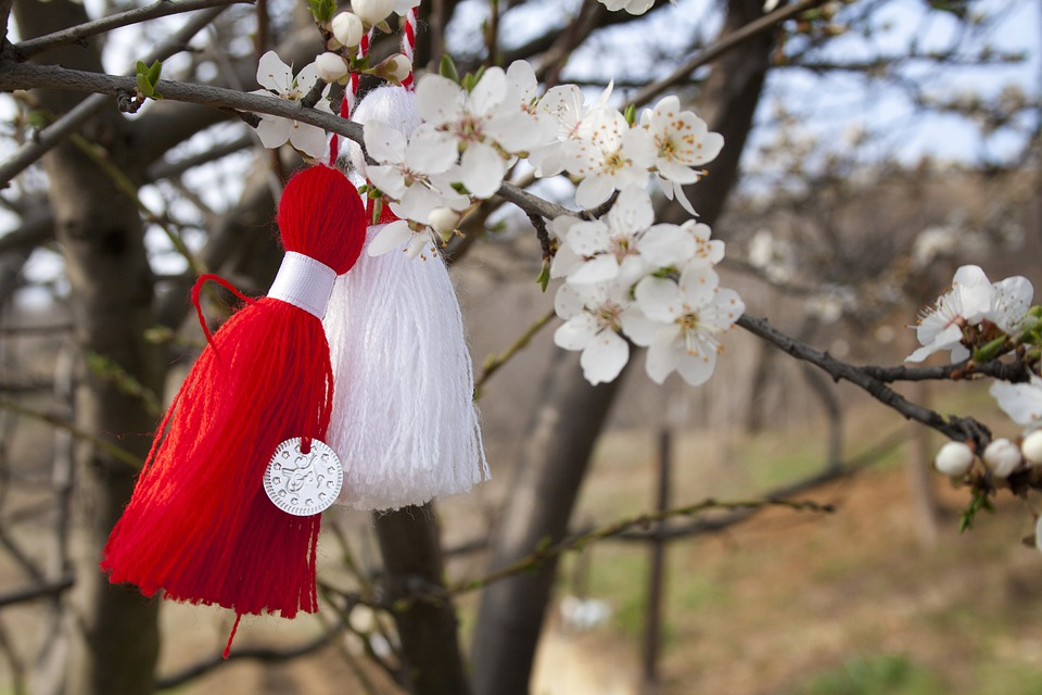 Pesco, Flower, March, Spring, Nature, Bow