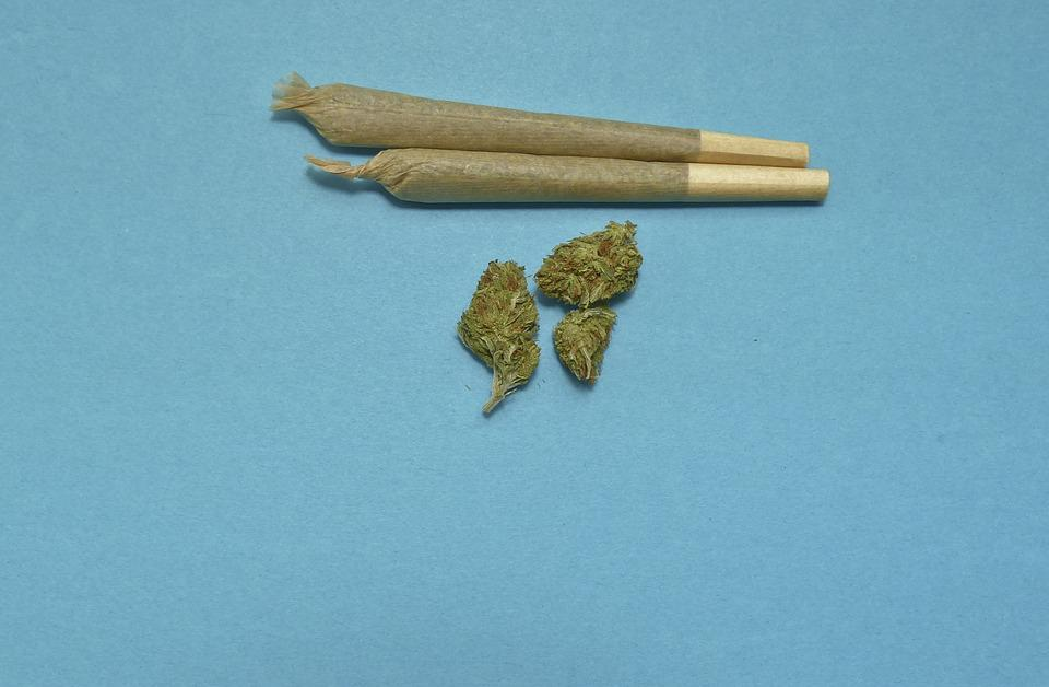 Marijuana, Medical, Weed, Mj, Cannabis, Drug