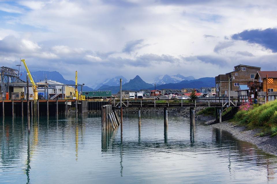 Alaska, Homer Ak, Aquatic, Homer, Marine, Sea, Shore