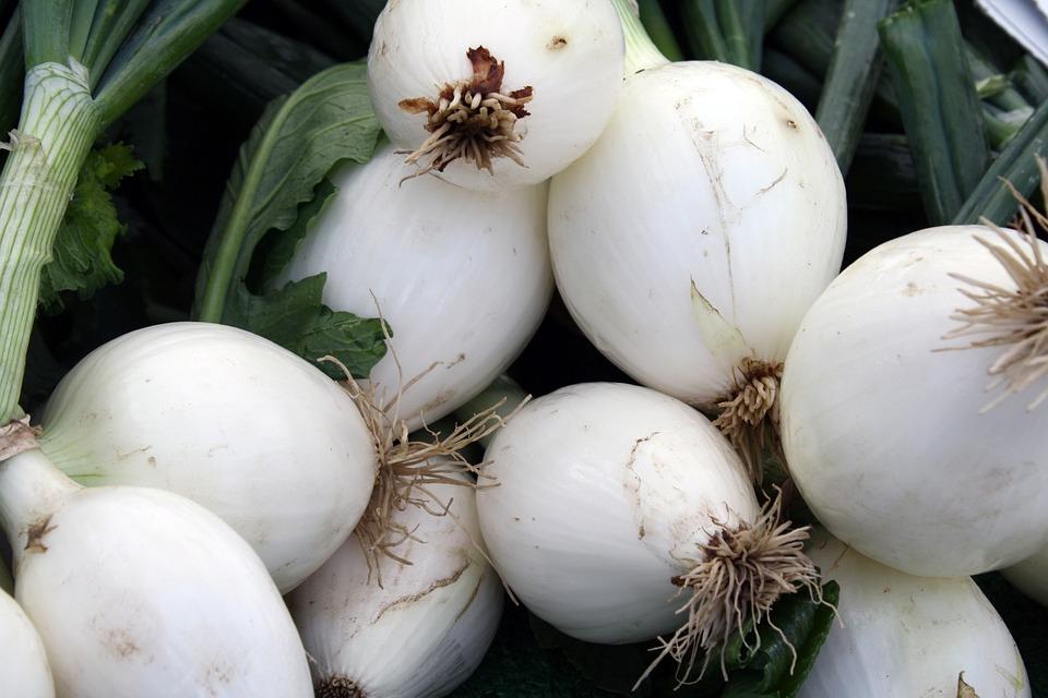 Green, Onions, Farmers, Market, Vegetable, Kitchen