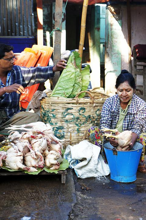 Chickens, Market, Chicken, Market Vendor, Sell