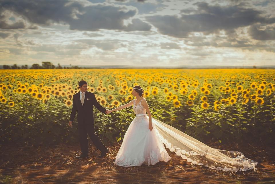 Wedding, Couple, Sunflower Field, Marriage