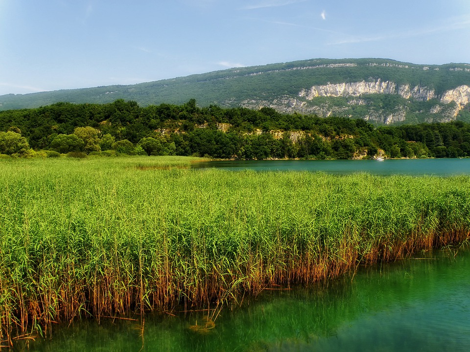 France, Marsh, Water, Lake, Reflections, Mountains