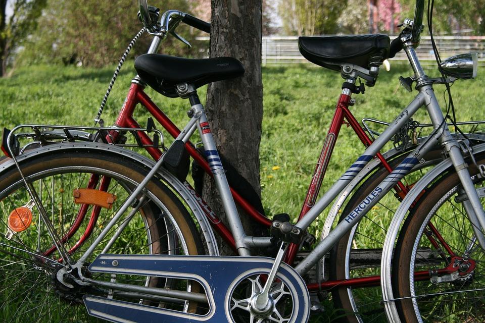 Mauerpark, Berlin, Meadow, Bike, Wheel, Nature, Grass