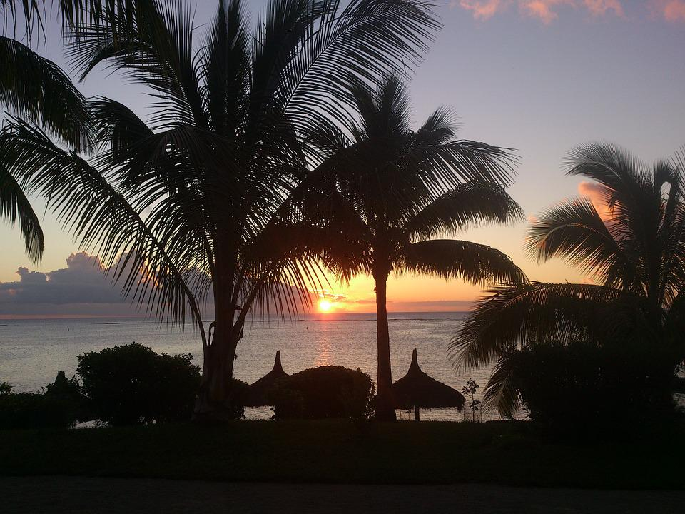 Sunset, Palm Trees, Beach, Mauritius, Holiday, Exotic