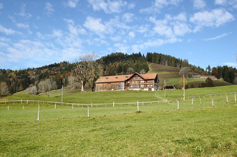 Farm, Canton Of Appenzell, Switzerland, Tourism, Meadow