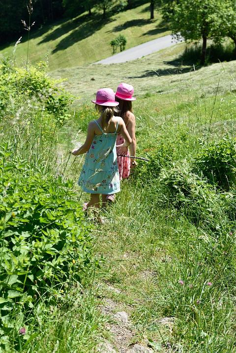 Children, Girl, Meadow, Hay, Grass, Hiking