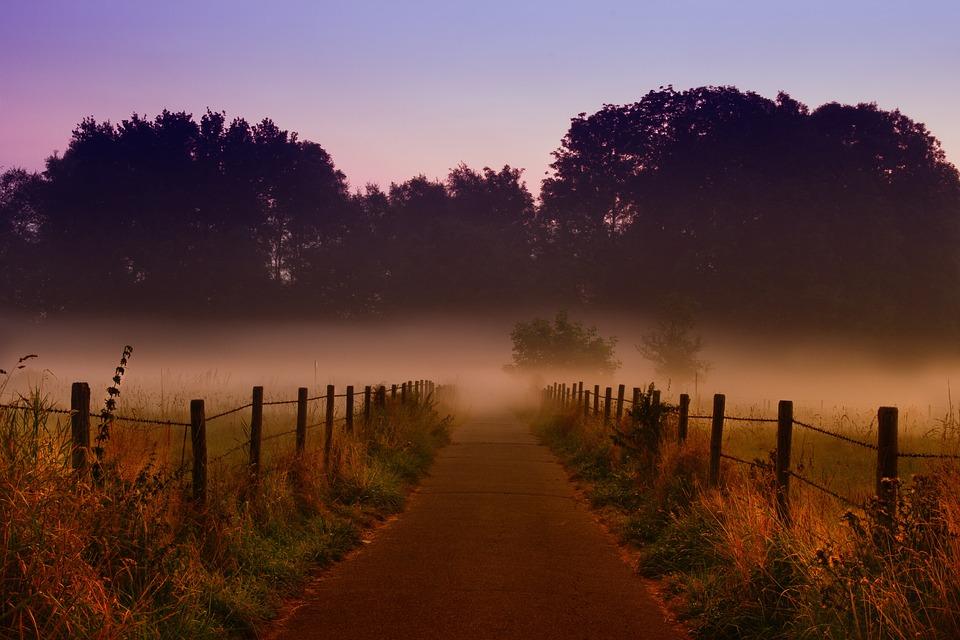 Dawn, Fog, Nebelschleier, Field, Meadow, Fence, Road
