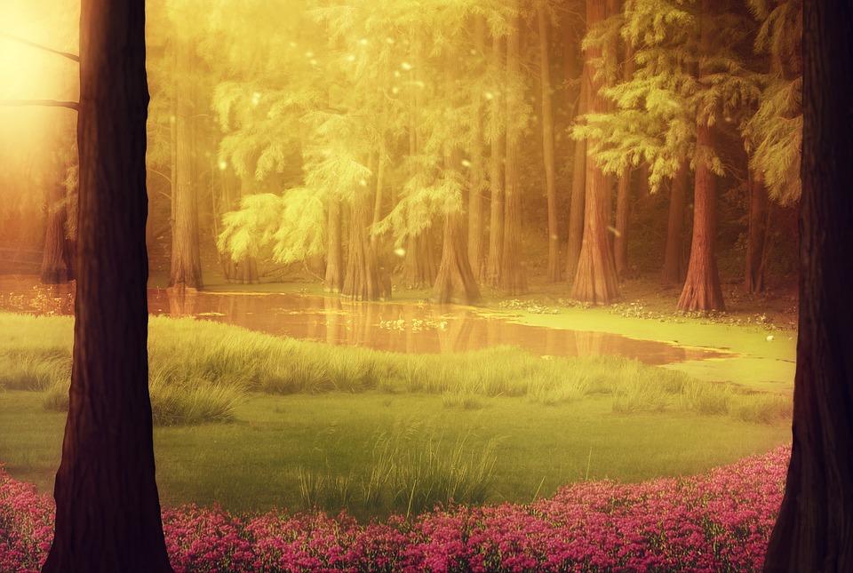 Fantasy, Forest, Moss, Lake, Meadow, Flowers, Sunlight
