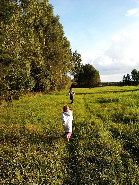 Forest, Meadow, Grass, Green, Child