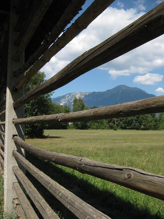 Fence, Pasture, Meadow, Pasture Fence, Landscape