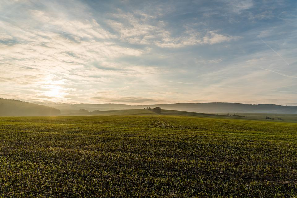 Landscape, Spacious, Field, Meadow, Sunset, Sky