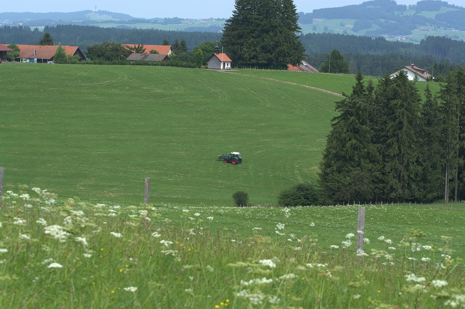 Tractor, Landscape, Alpine, Agriculture, Nature, Meadow