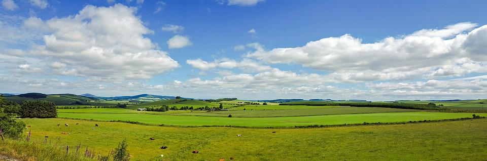 Scotland, England, Landscape, Meadow, Cows, Sky, Clouds