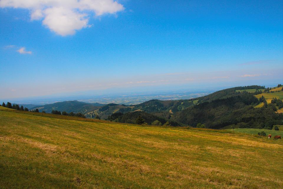 Blue Sky, Mountains, Meadow