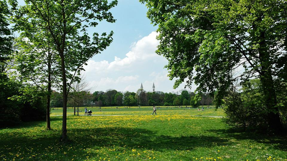 Munich, English Garden, Park, Meadow