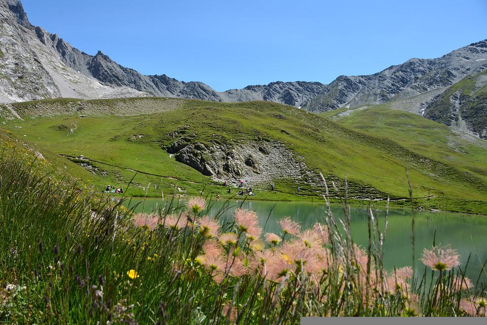 Mountains, Flowers, Lake, Meadow, Grass, Plants, Nature