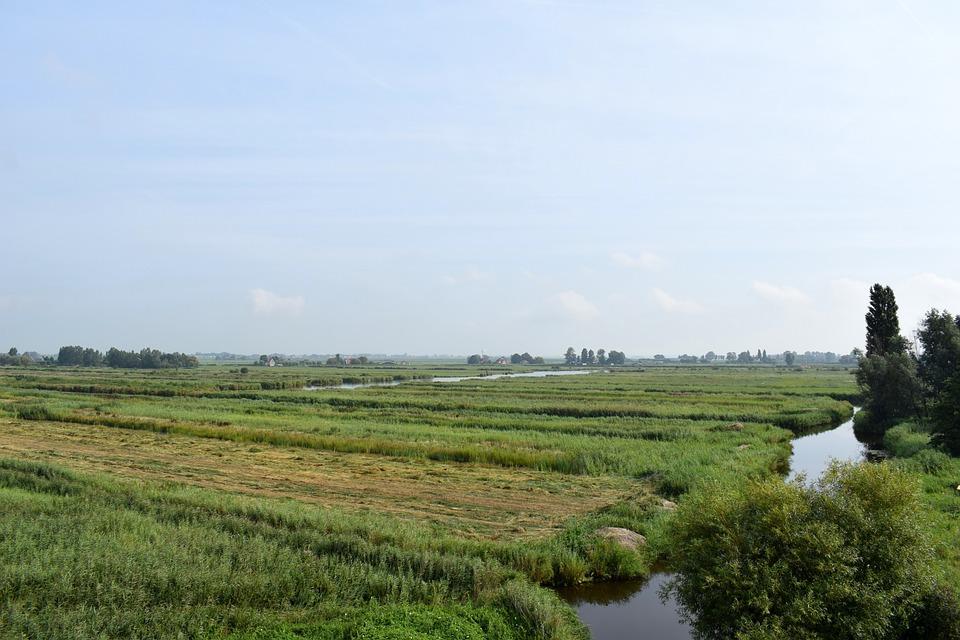 free photo meadow polder landscape green dutch landscape max pixel