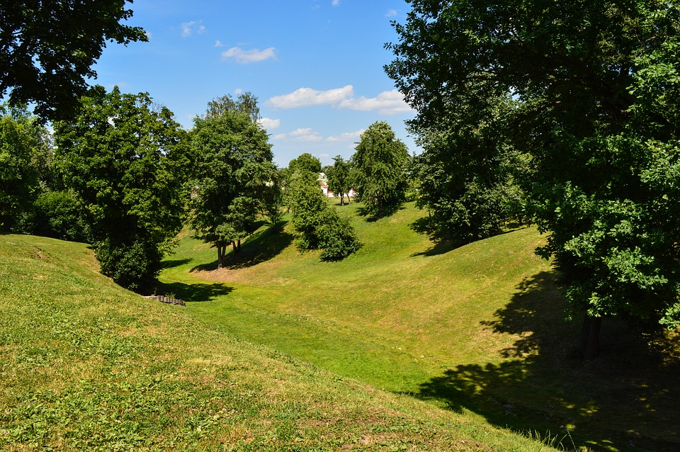Nature, Ravine, Summer, Meadow, Trees, Landscape