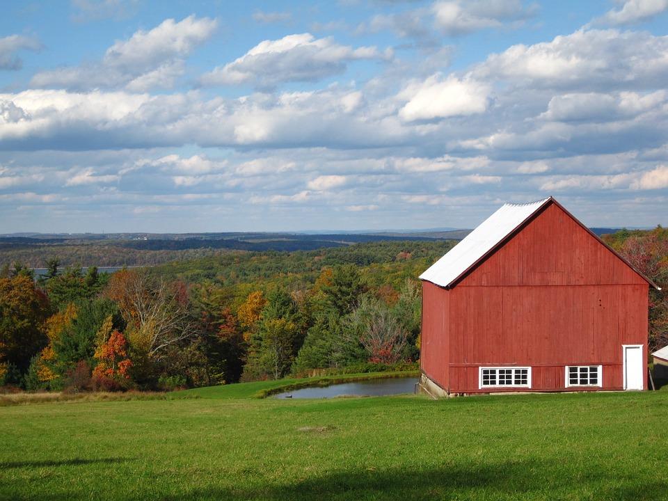 Barn, Fall, Trees, Autumn, Meadow, Scenic, Scenery