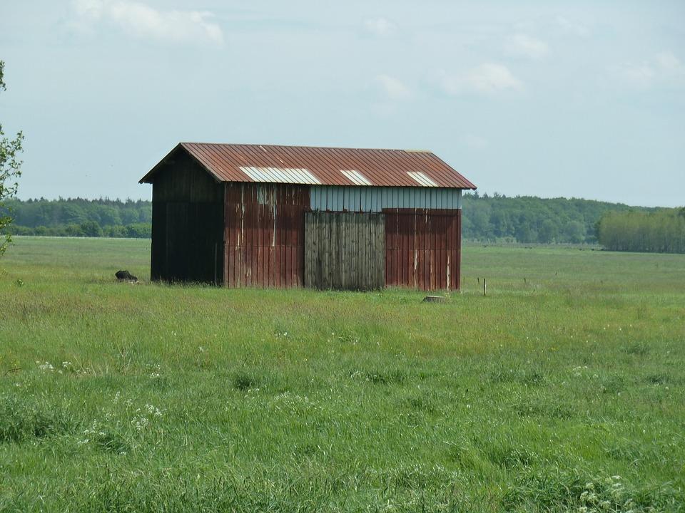 Barn, Grass, Summer, Meadow, Nature, Field, Sky
