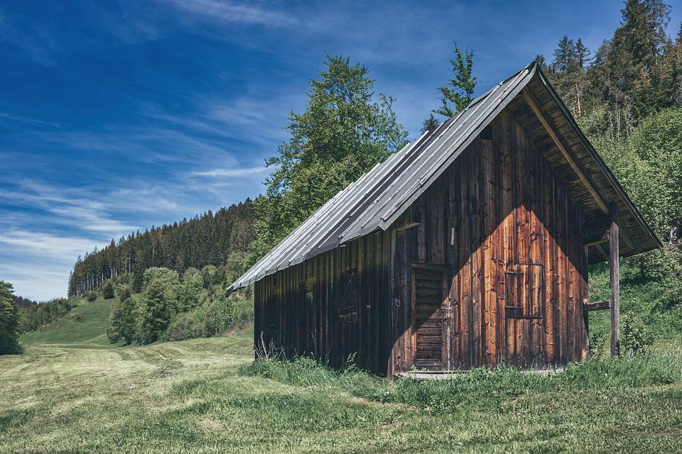 Cottage, Meadow, Nature, Summer, Alps, Black Forrest