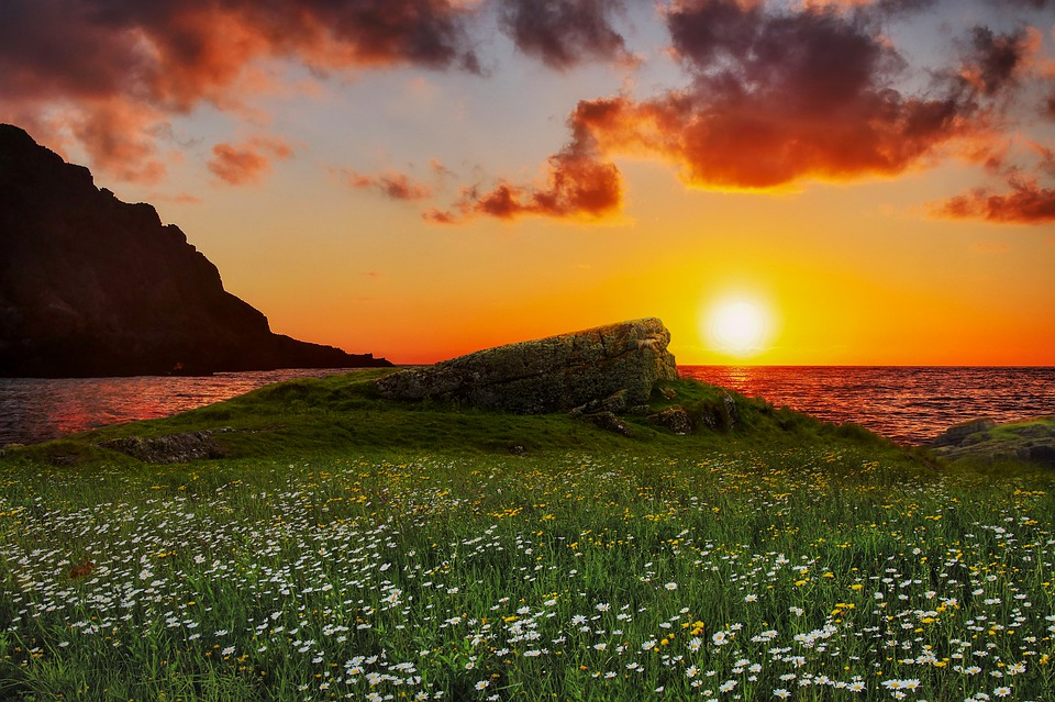 Fantasy, Sunset, Meadow, Landscape, Field, Flowers