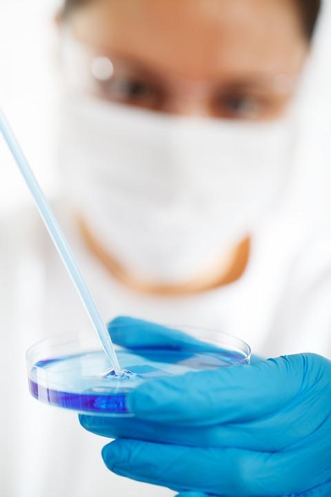 Biology, Research, Laboratory, Technology, Medical, Lab