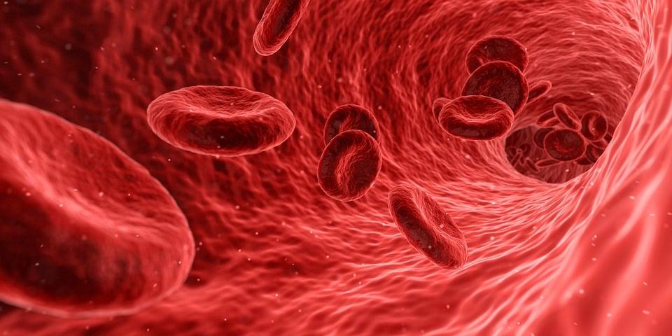 Blood, Cells, Red, Medical, Medicine, Anatomy, Health