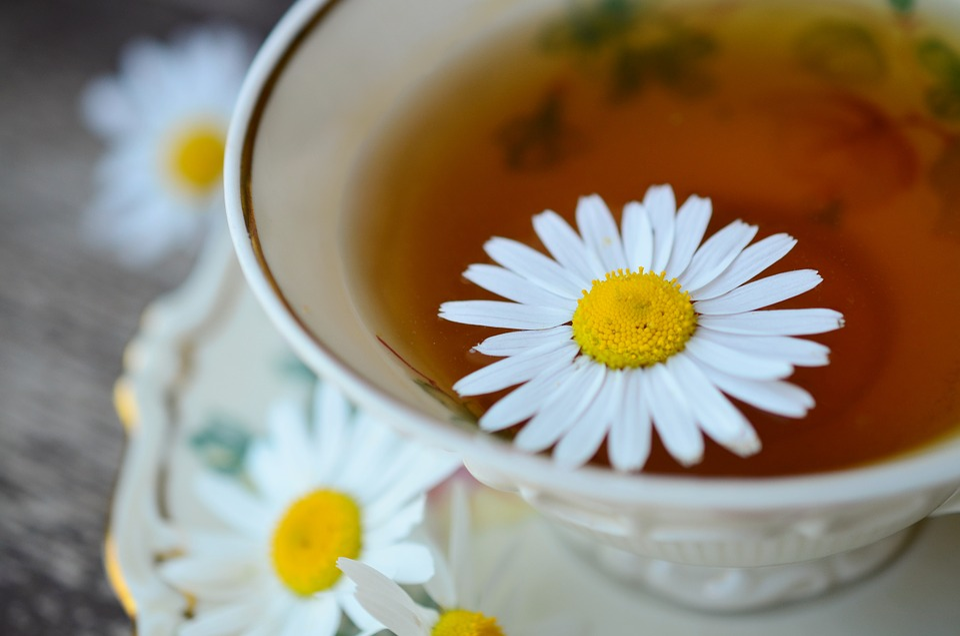 Chamomile, Chamomile Tea, Tee, Medicine, Naturopathy