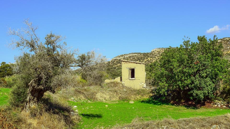 Cyprus, Psematismenos, Landscape, Mediterranean