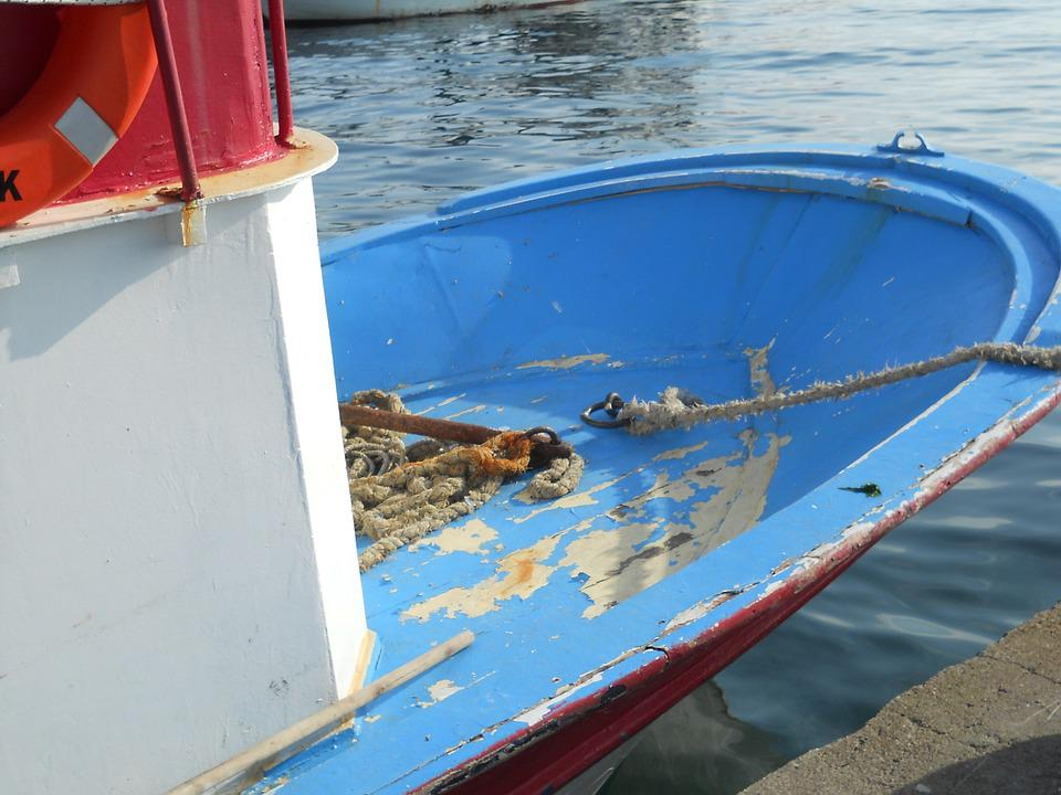 Boat, Marine, Fish, Mediterranean, Nature