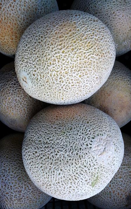Melon, Calameño, Fruit