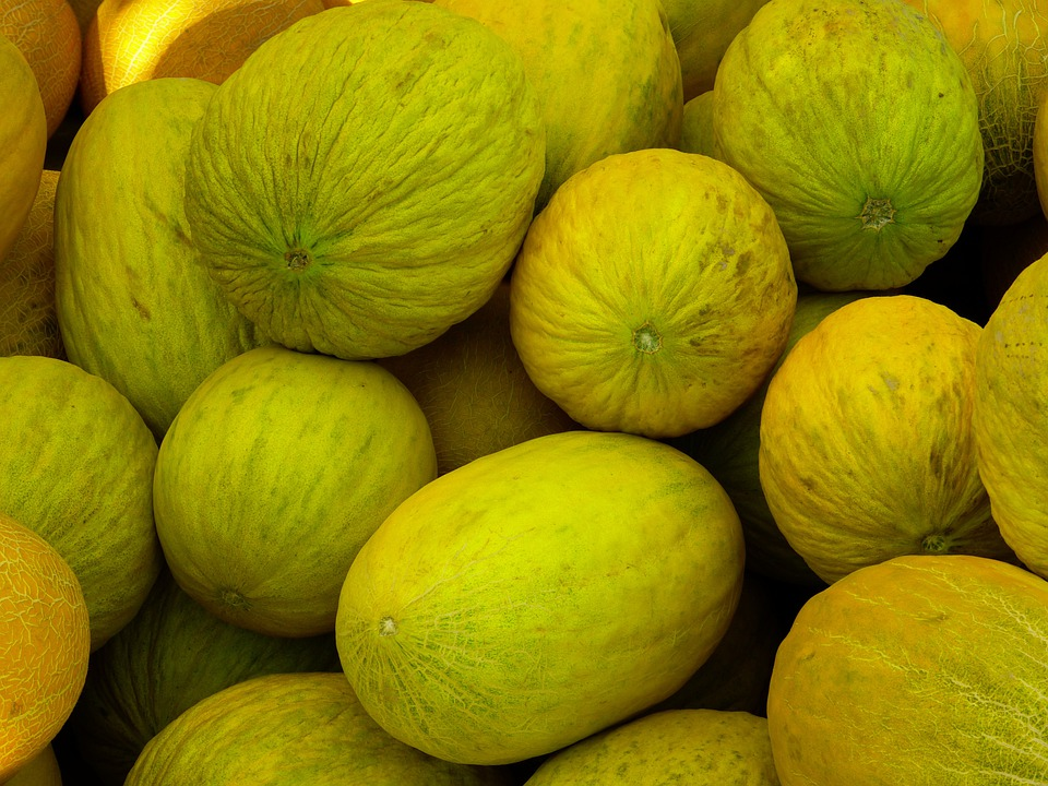Melons, Honeydew Melons, Eating Fruit, Yellow