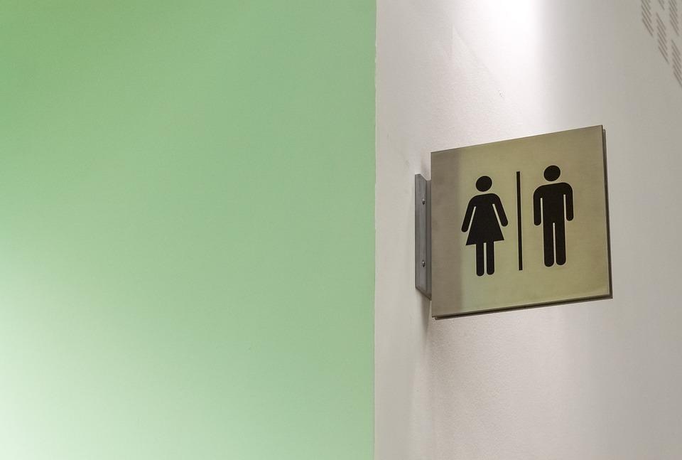 Bathroom, Toilet, Men, Women, Wc, Hygiene, Inside