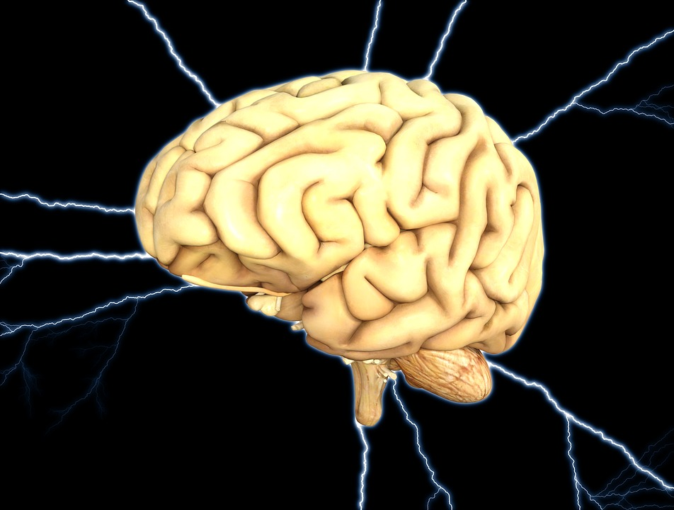 Brain, Energy, Thought, Mental, Brainstorm, Anatomy