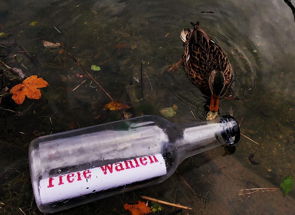 Message In A Bottle, Message, Bottle