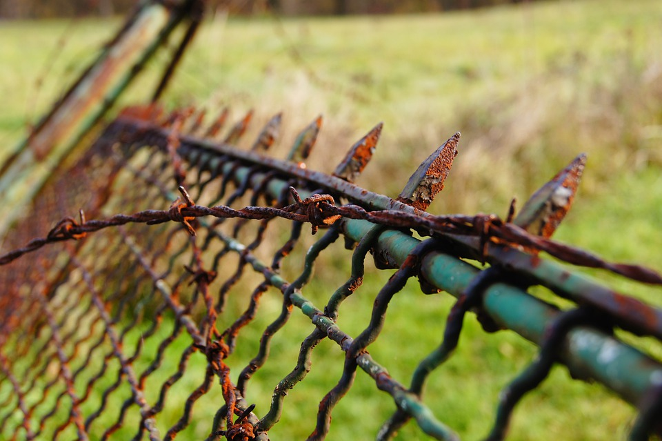 Stainless, Pointed, Fence, Barbed Wire, Rusted, Metal