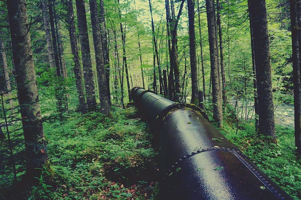 Water Pipeline, Forest, Metal Pipe, Landscape