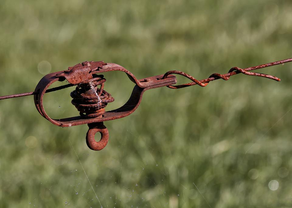 Free photo Metal Wire Fence Pasture Fence Tensioner - Max Pixel
