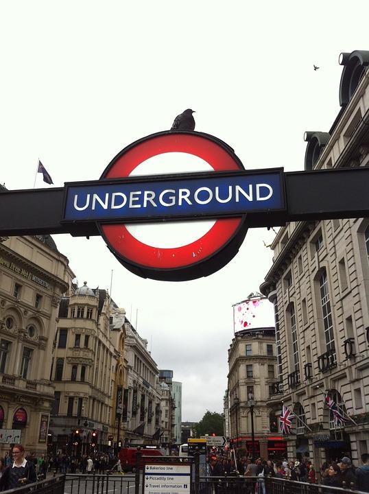 London, England, Metro, Dove, Trip, Big City